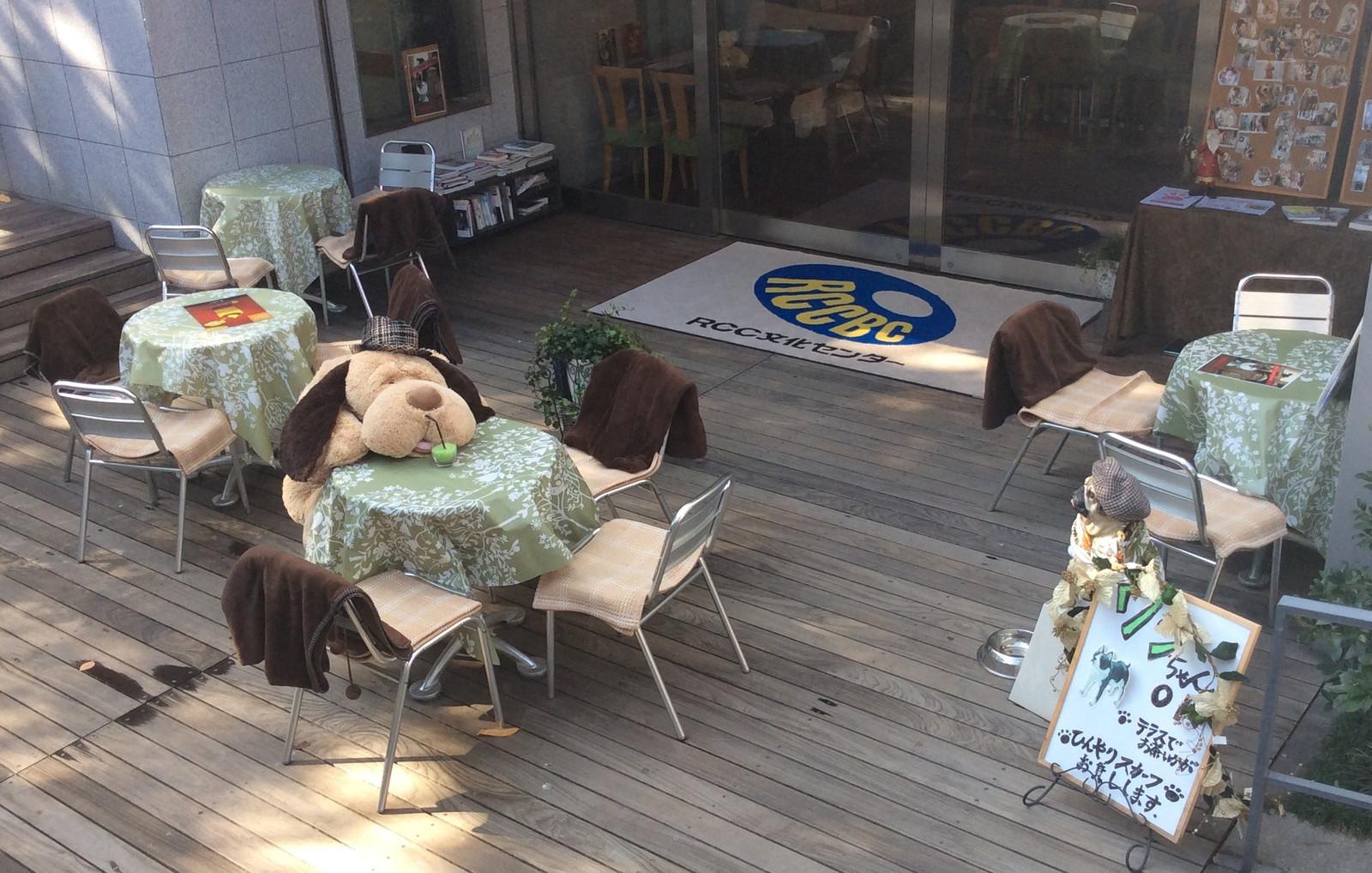 カフェ 広島 ドッグ