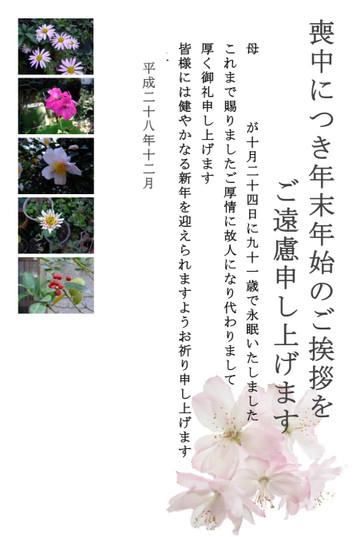 Img_9146_2
